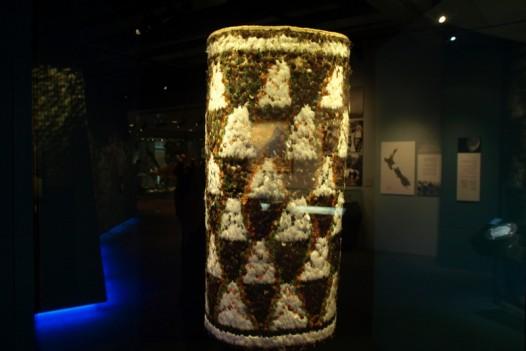 Te Papa Museum – Wellington